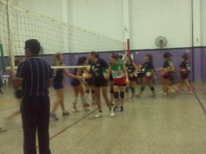 CITES - CCC  Voley