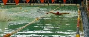 Grandes resultados para los nadadores Master en el Torneo Argentino